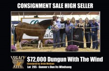 """2017 Legacy Reining Breeders Sale – High Seller """"DunGun With The Wind"""""""