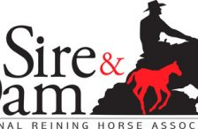 NRHA Sire & Dam Stallion Auction
