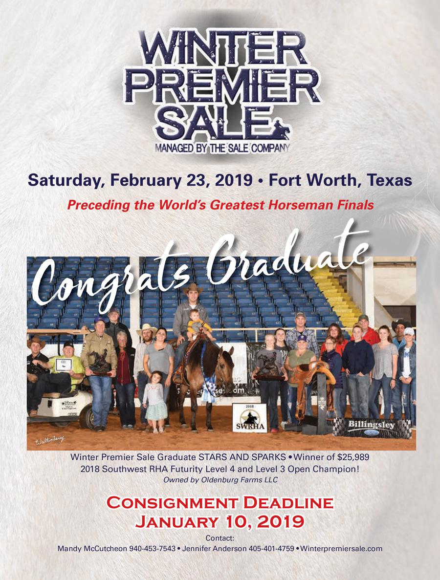 Winter premier reining cowhorse sale auction 2019