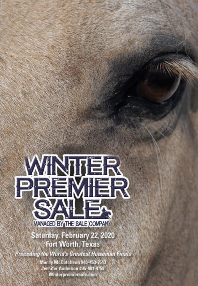 2020 winter premier performance horse sale